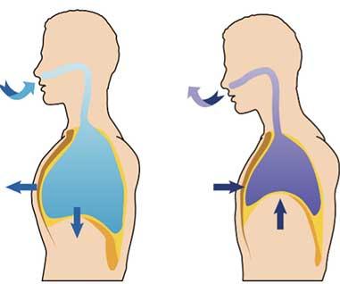 口呼吸の図