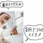 歯石除去は必要?痛くない?自分で取れる?何か月おきが良い?費用は?