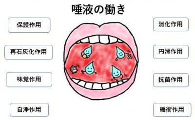 唾液の働き